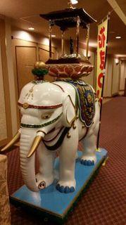 白象.jpg